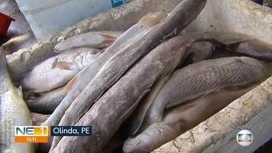 Consumidores lotam estabelecimentos para comprar peixe para a Semana Santa - Movimento foi intenso em Olinda, na manhã desta quinta-feira (18)