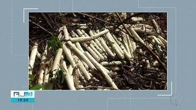 Bananas de dinamite são encontradas em terreno baldio em Italva, RJ, - Esquadrão Antibomba da Polícia Civil foi acionado para fazer a remoção dos explosivos.