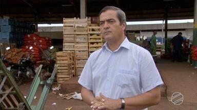 86% das hortaliças vendidas na Ceasa de Campo Grande vêm de outros estados - Essa é uma realidade que os produtores querem mudar.