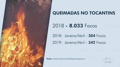 Índices mostram número alarmante de queimadas no Tocantins - Índices mostram número alarmante de queimadas no Tocantins