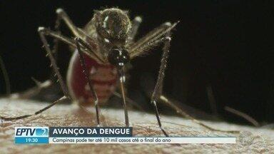 Prefeitura de Campinas faz nova projeção de até 10 mil casos de dengue em 2019 - Campinas (SP) tem quase 5,5 mil casos de dengue confirmados, neste mês de abril. Até o final de 2019, número pode chegar a 10 mil, de acordo com a Prefeitura.