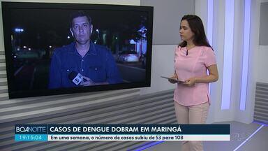 Aumenta o número de casos confirmados de dengue em Maringá - Do início do ano até agora foram confirmados 108 casos confirmados
