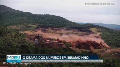 Três meses após tragédia da Vale, famílias ainda esperam notícias de desaparecidos - De acordo com a Polícia Civil de Minas Gerais, até o momento, 233 mortos foram identificados pelo IML.