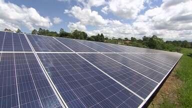 """Startup fornece energia solar para os clientes - A startup é dona de """"fazenda de sol"""", uma usina formada por mil painéis solares importados da China."""