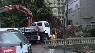 Vendavais causam estragos no Rio e em São Paulo; duas pessoas morreram em Santos - Ventos de 150 km/h foram registrados no litoral paulista. Diversas árvores caíram.