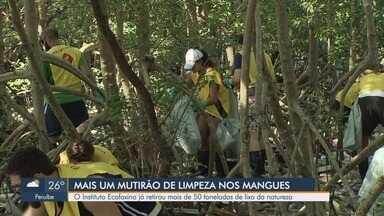Mutirão promove limpeza nas praias e mangues da região - Instituto Ecofaxina já retirou mais de 50 toneladas de lixo da natureza.