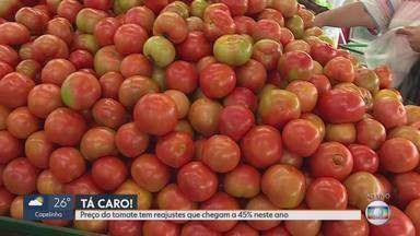 Preço do tomate sobe e acumulado do ano já chega a 45% - A dica é fazer pesquisa de preços antes de comprar.