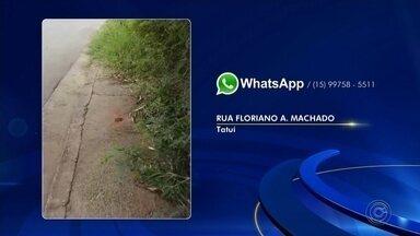 Moradores enviam reclamações da região de Itapetininga à TV TEM - Os moradores de Tatuí (SP) reclamam de mato em ruas da cidade. Em Tietê (SP), a reclamação dos moradores é da falta de iluminação pública na Rua Dos Pintados, no Jardim Bonanza.
