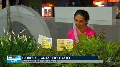 Evento sobre flores vai até dia 20 de maio no Crato - Confira mais notícias em g1.globo.com/ce