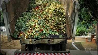 Brasileiro desperdiça, por ano, 41 quilos de comida - O repórter Márcio Gomes mostra como, em todo o país e em todas as classes sociais, as pessoas jogam fora alimento.