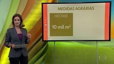 Você sabe quantos metros tem um hectare? - Saiba como são calculadas algumas medidas agrárias.