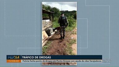 Cães farejadores auxiliam polícia a encontrar drogas em Ponta Grossa - Jovem de 18 anos foi preso depois que polícia encontrou droga na carcaça de televisor antigo.