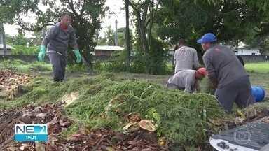 Reciclagem do lixo pode gerar emprego e dar lucro - Professores e alunos da UFPE criaram uma biorrefinaria para reaproveitar materiais