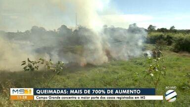 Campo Grande tem 700% de aumento nas queimadas no mês de junho - Capital registra maior parte dos focos de MS.