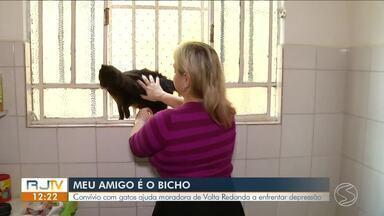 Série 'Meu Amigo é o Bicho' mostra amor incondicional entre donos e animais - Parte IV - Convívio com gatos ajuda moradora de Volta Redonda a enfrentar depressão.