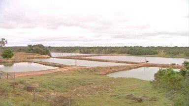 Alteração na lei de despesca - Piscicultores de Mato Grosso, agora só podem comercializar o pescado em locais com inspeção.