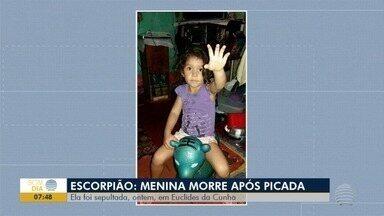 Vigilância Epidemiológica intensifica ações contra escorpiões - Serviço, em Euclides da Cunha Paulista, começou após morte de criança.