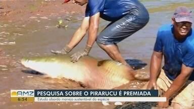 Pesquisa sobre o pirarucu recebe prêmio internacional - Estudo aborda manejo sustentável da espécie.