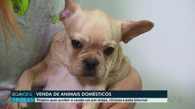 Projeto de lei quer proibir a venda de animais domésticos - De acordo com o projeto de lei ficaria proibido vender animais domésticos em pet shops, clínicas veterinárias e pela internet.