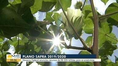 Plano Safra: governo federal anuncia recursos de R$ 225,5 bilhões para produtores - No total, o Plano Safra prevê a concessão de R$ 225,59 bilhões em crédito para os pequenos, médios e grandes produtores durante o ano-safra 2019/2020.