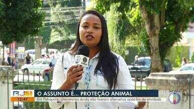 Charreteiros de Petrópolis ainda não têm alternativa após fim das atividades com animais - Assista a seguir.