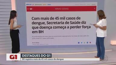 Com mais de 45 mil casos de dengue, `PBH diz que doença começa a perder força - O número de casos de dengue em Belo Horizonte subiu para 45.778 casos, segundo balanço divulgado pela Secretaria Municipal de Saúde nesta quarta-feira (19). O número de mortes continua o mesmo dos últimos dois balanços, 12.