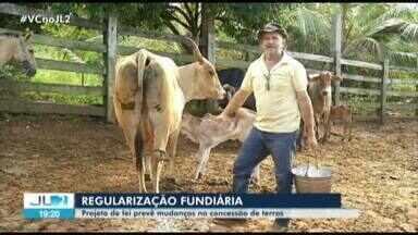 Projeto de lei prevê mudanças na concessão de terras no Pará e preocupa ambientalistas - Movimentos sociais ligados ao campo estão preocupados com a possibilidade de mudanças nas regras.