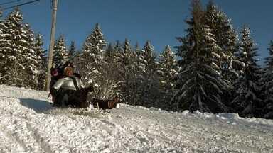 Glória Maria vive uma aventura gelada nos trenós noruegueses - Em uma pista de dois quilômetros de extensão e pura adrenalina, os trenós não têm freio e podem chegar a 20 quilômetros por hora.