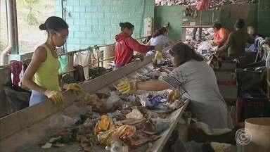 Cooperativa de Itatiba recicla isopor e gera renda para trabalhadores - Em Itatiba (SP), o material do isopor que antes se misturava com o lixo é aproveitado e gera renda para pessoas que trabalham em uma cooperativa.