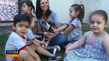 Cachorrinha furtada é devolvida a alunos de creche em Paranavaí - Animal foi devolvido depois que familiares dos alunos fizeram anúncios em grupos de mensagens.