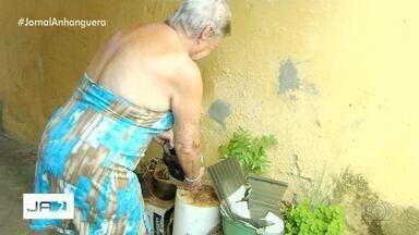 Armadilhas instaladas em bairros de Goiânia têm ajudado no combate ao mosquito da dengue - Os números da doença não param de subir. Já são 29 mortes por dengue só neste ano em Goiás.