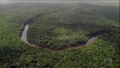 Inpe registra aumento de 88% de desmatamento na Amazônia em junho - Comparação é com o mesmo mês de 2018. Ministro do Meio Ambiente diz que preservação precisa encontrar um caminho que não sacrifique o desenvolvimento econômico.