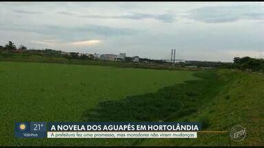 Prefeitura de Hortolândia descumpre prazo para retirada de aguapés - Situação mais crítica é no Parque Remanso das Águas, no Jardim Amanda.