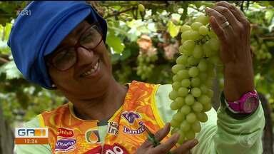 Exportadores comemoram retirada de impostos pagos sobre frutas enviadas a Europa - Um acordo firmado entre o Mercosul e a União Europeia, no fim do mês de junho, trouxe ânimo para os produtores.