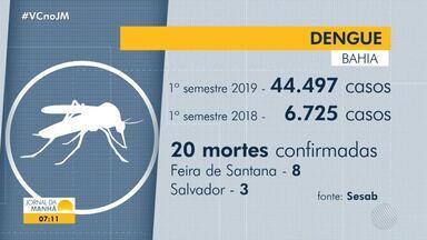 Bahia já teve mais de 44 mil notificações por dengue somente este ano - Até o dia 03/07, foram registradas 20 mortes provocadas pela doença.