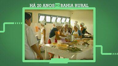 Bahia Rural 20 anos: Relembre iniciativa que usava incubador para produção de alimentos - Técnica criada na Bahia era considerada pioneira há 20 anos.