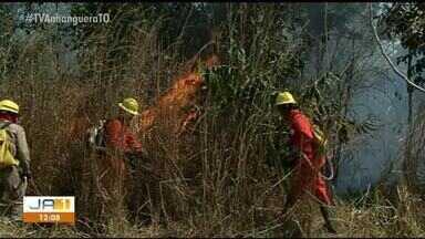 Bombeiros registram média de seis focos de incêndios urbanos por dia em Gurupi - Bombeiros registram média de seis focos de incêndios urbanos por dia em Gurupi