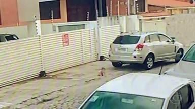 Fantástico explica como um bebê de 11 meses foi parar em uma situação alarmante - Era um fim de domingo em João Pessoa, Paraíba. Um bebê engatinha sozinho na calçada. Um carro começa a se movimentar. A cena foi registrada por uma câmera de segurança da rua.