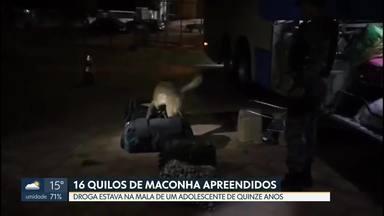 Polícia apreende 16 quilos de maconha na BR-020 - Foi na altura de Planaltina. A droga estava dentro da mala de um adolescente de 15 anos.