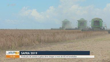 Produção de grãos de soja sofrem queda e 57 mil toneladas são esperadas em 2019 - Colheita de grãos no ano deve ser de 60 mil toneladas, segundo o IBGE.