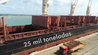 Porto de Ilhéus volta a exportar cargas de eucalipto, após hiato de quase 20 anos - Na segunda-feira (22) foram enviadas 25 mil tonaladas da planta para a Europa.