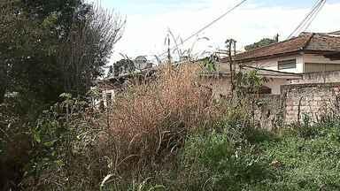 Moradores do Jardim Europa, em Ponta Grossa, reclamam de esgoto a céu aberto há 30 anos - Eles dizem que o mau cheiro é muito forte.