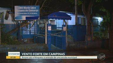 Vento forte derruba árvore e bloqueia entrada de escola municipal em Campinas - A escola é Maria Luiza Pompeu de Camargo, no Jardim Gabriel. Segundo a prefeitura, as aulas não serão suspensas, mas as crianças entrarão pelo portão do estacionamento.