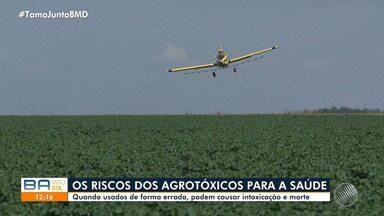 Bahia teve mais de 400 casos de intoxicação por agrotóxicos foram registrados em 2018 - Recentemente Ministério da Agricultura aprovou o cadastro de mais de 50 novos agrotóxicos em todo o país.