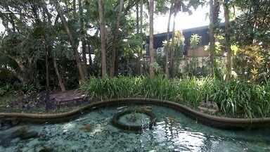Jardins de Burle Marx estão espalhados por toda São Paulo - Roberto Burle Marx completaria 110 anos no dia 4 de agosto de 2019 se estivesse vivo. Por toda a São Paulo, é possível encontrar seus belos trabalhos de paisagismo, assim como uma tapeçaria que fica no Paço Municipal de Santo André.