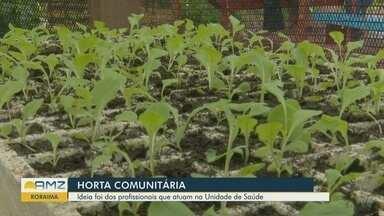 Em Boa Vista, posto de saúde adota horta comunitária - Funcionários e usuários do posto contribuem com projeto.
