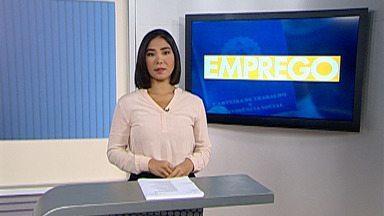 Alto Tietê tem mais de 200 vagas de emprego - Oportunidades estão divididas em várias cidades da região.