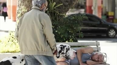 Bóris encontra Mamede desorientado na praça - Ele decide ajudar o vizinho a voltar para casa