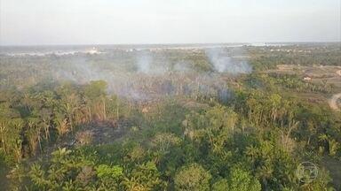 Noruega suspende repasses de R$ 133 milhões para o Fundo Amazônia - Recursos seriam usados para proteger a floresta e desenvolver projetos na região. Governo norueguês revelou preocupação com relatos de desmatamento no Brasil.