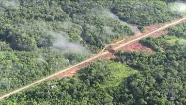 ONG Imazon registra avanço do desmatamento na Amazônia - Para o cálculo do nível de desmatamento, o Imazon usa metodologia diferente do Instituto Nacional de Pesquisas Espaciais, que também faz alerta de áreas desmatadas.